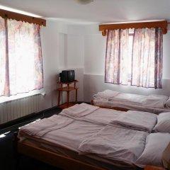 Отель Phoenix Family Hotel Болгария, Чепеларе - отзывы, цены и фото номеров - забронировать отель Phoenix Family Hotel онлайн комната для гостей фото 3