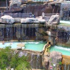 Отель Sunshine Villa Вьетнам, Нячанг - отзывы, цены и фото номеров - забронировать отель Sunshine Villa онлайн бассейн фото 2