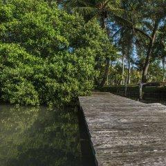 Отель Isla Tajín Beach & River Resort фото 2