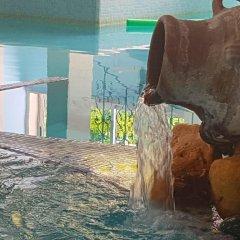Отель Terme Villa Piave Италия, Абано-Терме - отзывы, цены и фото номеров - забронировать отель Terme Villa Piave онлайн с домашними животными