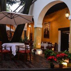 Отель Suites Los Camilos - Adults Only Мексика, Мехико - отзывы, цены и фото номеров - забронировать отель Suites Los Camilos - Adults Only онлайн питание
