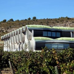 Cava & Hotel Mastinell фото 15
