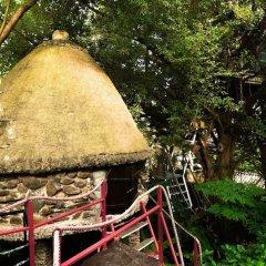 Отель Dao Anh Khanh Treehouse Ханой фото 6