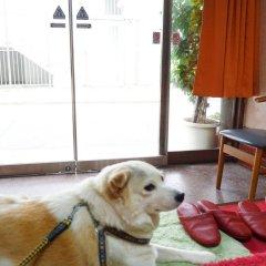 Отель Yamamoto Ryokan Япония, Хаката - отзывы, цены и фото номеров - забронировать отель Yamamoto Ryokan онлайн с домашними животными