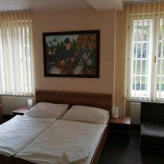 Отель U Svejku Чехия, Прага - отзывы, цены и фото номеров - забронировать отель U Svejku онлайн комната для гостей фото 3