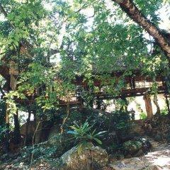 Отель Ella Jungle Resort Шри-Ланка, Бандаравела - отзывы, цены и фото номеров - забронировать отель Ella Jungle Resort онлайн фото 4