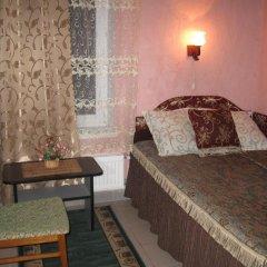Гостиница Palmira Hostel Backpackers Украина, Каменец-Подольский - отзывы, цены и фото номеров - забронировать гостиницу Palmira Hostel Backpackers онлайн комната для гостей фото 5