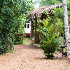 Отель Dalmanuta Gardens Шри-Ланка, Бентота - отзывы, цены и фото номеров - забронировать отель Dalmanuta Gardens онлайн фото 3