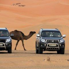 Отель Sahara Dream Camp Марокко, Мерзуга - отзывы, цены и фото номеров - забронировать отель Sahara Dream Camp онлайн банкомат