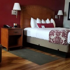 Отель Best Western Plus Greenwell Inn комната для гостей фото 3