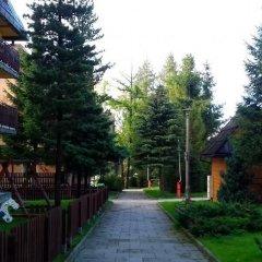 Отель Dafne Zakopane фото 5