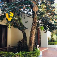 Отель Hoi An Phu Quoc Resort фото 6