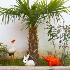 Limon Hostel Турция, Эдирне - отзывы, цены и фото номеров - забронировать отель Limon Hostel онлайн фото 3