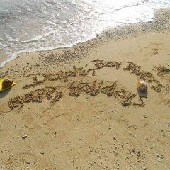 Отель Dolphin Bay Divers Matei Фиджи, Остров Тавеуни - отзывы, цены и фото номеров - забронировать отель Dolphin Bay Divers Matei онлайн пляж фото 2