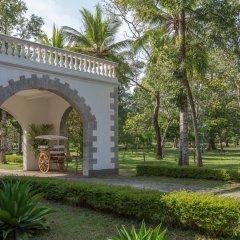 Отель The Sanctuary at Tissawewa Шри-Ланка, Анурадхапура - отзывы, цены и фото номеров - забронировать отель The Sanctuary at Tissawewa онлайн фото 5