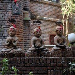 Отель Vajra Непал, Катманду - отзывы, цены и фото номеров - забронировать отель Vajra онлайн развлечения