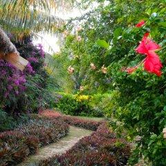 Отель Viwa Island Resort фото 6