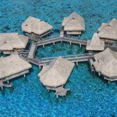 Отель Sofitel Moorea la Ora Beach Resort Французская Полинезия, Папеэте - 1 отзыв об отеле, цены и фото номеров - забронировать отель Sofitel Moorea la Ora Beach Resort онлайн с домашними животными