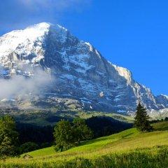 Отель Aspen Alpine Lifestyle Hotel Швейцария, Гриндельвальд - отзывы, цены и фото номеров - забронировать отель Aspen Alpine Lifestyle Hotel онлайн фото 7