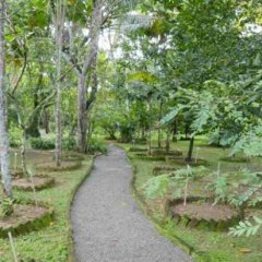 Отель Dalmanuta Gardens Шри-Ланка, Бентота - отзывы, цены и фото номеров - забронировать отель Dalmanuta Gardens онлайн фото 5