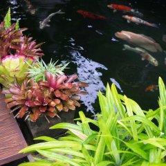 Отель Just Fine Krabi Таиланд, Краби - отзывы, цены и фото номеров - забронировать отель Just Fine Krabi онлайн