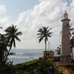 Отель Villa Aurora, Galle Fort Шри-Ланка, Галле - отзывы, цены и фото номеров - забронировать отель Villa Aurora, Galle Fort онлайн пляж фото 2