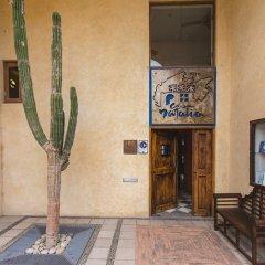 Отель Casa Natalia интерьер отеля фото 2