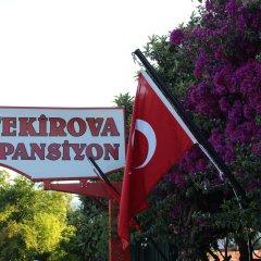 Tekirova Pansiyon Турция, Кемер - отзывы, цены и фото номеров - забронировать отель Tekirova Pansiyon онлайн развлечения