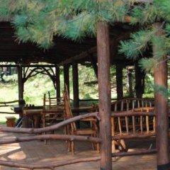 Гостиница Горлица в Глазове отзывы, цены и фото номеров - забронировать гостиницу Горлица онлайн Глазов фото 2