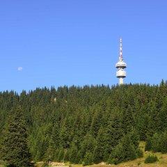 Отель MPM Hotel Mursalitsa Болгария, Пампорово - отзывы, цены и фото номеров - забронировать отель MPM Hotel Mursalitsa онлайн приотельная территория