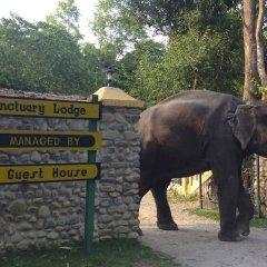 Отель Maruni Sanctuary by KGH Group Непал, Саураха - отзывы, цены и фото номеров - забронировать отель Maruni Sanctuary by KGH Group онлайн спортивное сооружение