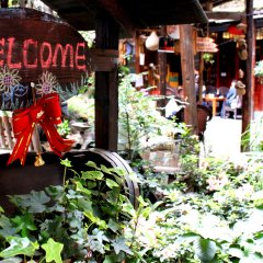 Hello Chengdu International Youth Hostel фото 11