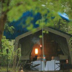 Отель Big Game Camp Yala Шри-Ланка, Катарагама - отзывы, цены и фото номеров - забронировать отель Big Game Camp Yala онлайн фото 14