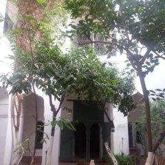 Отель Dar El Kharaz Марокко, Марракеш - отзывы, цены и фото номеров - забронировать отель Dar El Kharaz онлайн фото 11