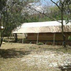 Отель Enkolong Tented Camp фото 3