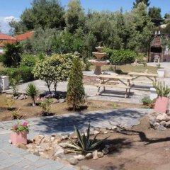 Отель Villa Gesthimani Греция, Ситония - отзывы, цены и фото номеров - забронировать отель Villa Gesthimani онлайн фото 8