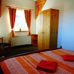 Отель Penzion U Studánky Чехия, Чодов - отзывы, цены и фото номеров - забронировать отель Penzion U Studánky онлайн удобства в номере