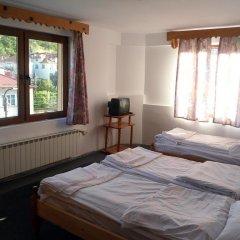 Отель Phoenix Family Hotel Болгария, Чепеларе - отзывы, цены и фото номеров - забронировать отель Phoenix Family Hotel онлайн комната для гостей фото 4