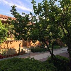 Hotel Ozlem Garden - All Inclusive фото 9