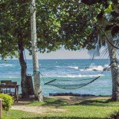 Отель Palm Villa пляж