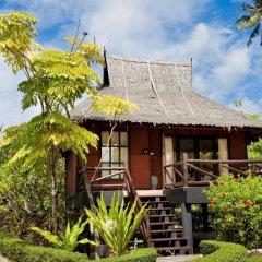 Отель Phi Phi Island Village Beach Resort бассейн фото 3