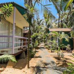 Отель Capital O 41974 Village Susegat Beach Resort Гоа фото 18