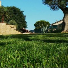 Отель B&B Antigua Потенца-Пичена приотельная территория