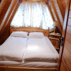 Отель Villa Malina Болгария, Боровец - отзывы, цены и фото номеров - забронировать отель Villa Malina онлайн комната для гостей
