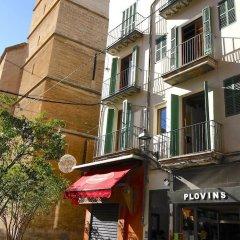 Отель Sant Miquel Homes Albufera Испания, Пальма-де-Майорка - отзывы, цены и фото номеров - забронировать отель Sant Miquel Homes Albufera онлайн фото 7