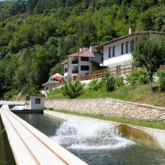 Отель Fisherman's Hut Family Hotel Болгария, Чепеларе - отзывы, цены и фото номеров - забронировать отель Fisherman's Hut Family Hotel онлайн приотельная территория фото 2