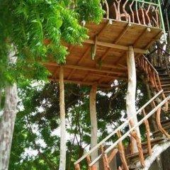 Отель Wild eco safari фото 9