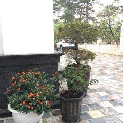 Queen Villa Hotel Далат фото 5