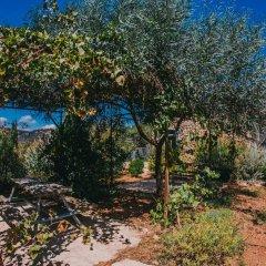 Отель Tur Sinai Organic Farm Resort Иерусалим фото 7