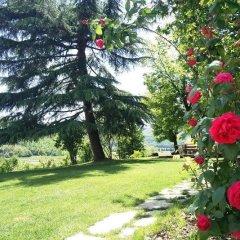 Отель Villa Strepitosa B&B Италия, Региональный парк Colli Euganei - отзывы, цены и фото номеров - забронировать отель Villa Strepitosa B&B онлайн фото 2